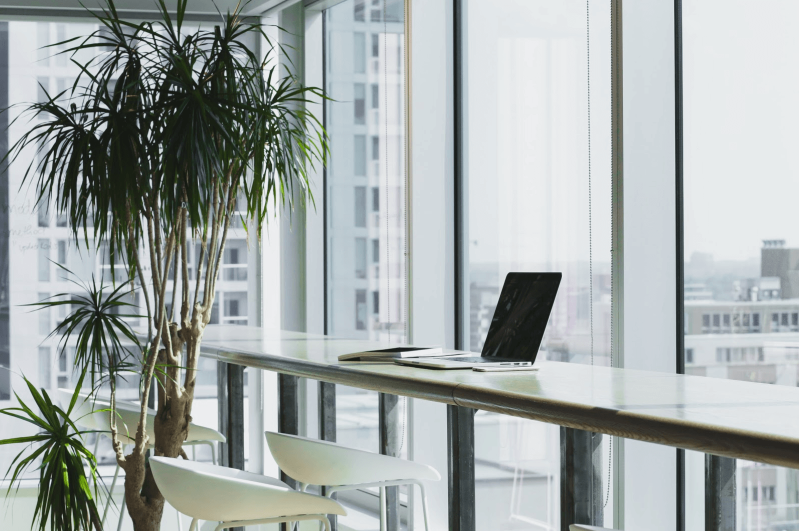 Biophilic Design: How To Incorporate Plants Into Your Office Interior